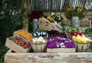 Farmers-Market-Tour-Vegetables-Kombucha_pinwheel